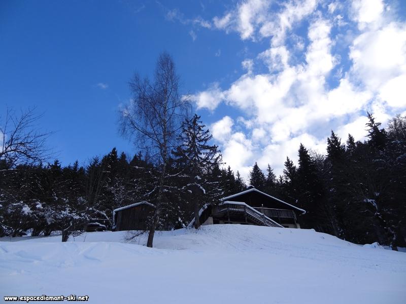 Chalets et forêt en amont de la piste
