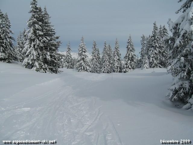 Début du Chemin de la Palette près des pistes nordiques