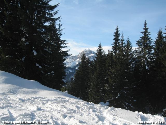 Le sommet du Mont Charvin qui dépasse de quelques conifères