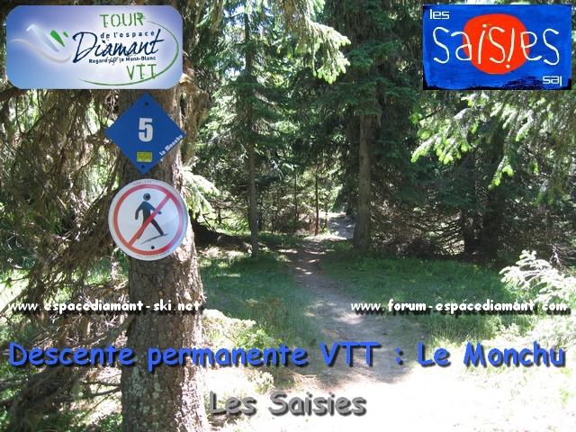 Piste bleue DH Le Monchu