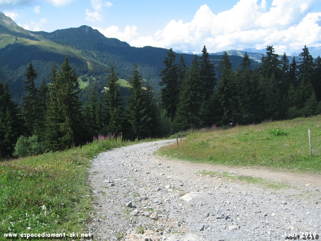 Depuis le Plateau de Cuvy, direction l'itinéraire Cross-Country Cuvy - Grande Parre !
