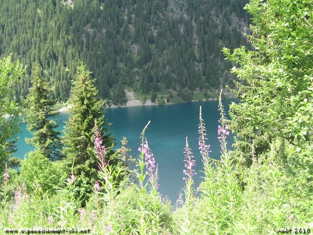 Vue plongeante sur le lac