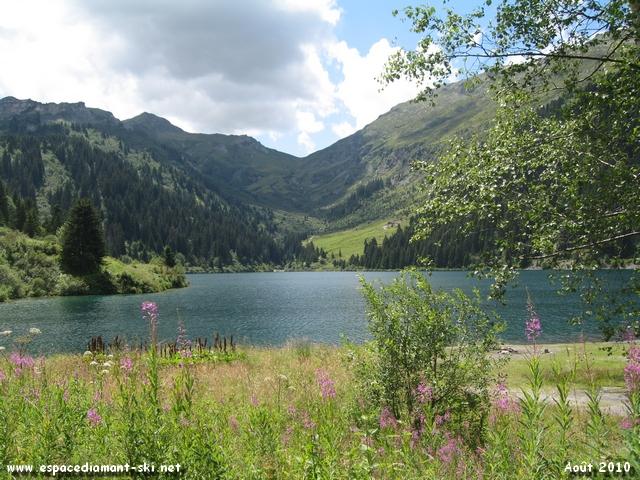 Le Lac de Saint Guérin avec quelques épilobes au premier plan