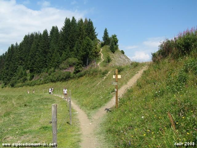 Sur la descente, bifurquez à droite vers le Crêt du Midi