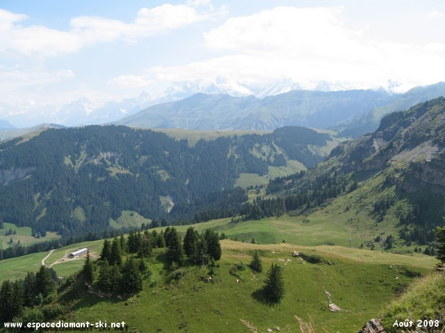 A la découverte des alpages, de la faune et de la flore alpine !