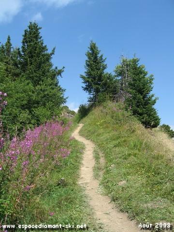 Le sentier sur l'étroite Crête du massif