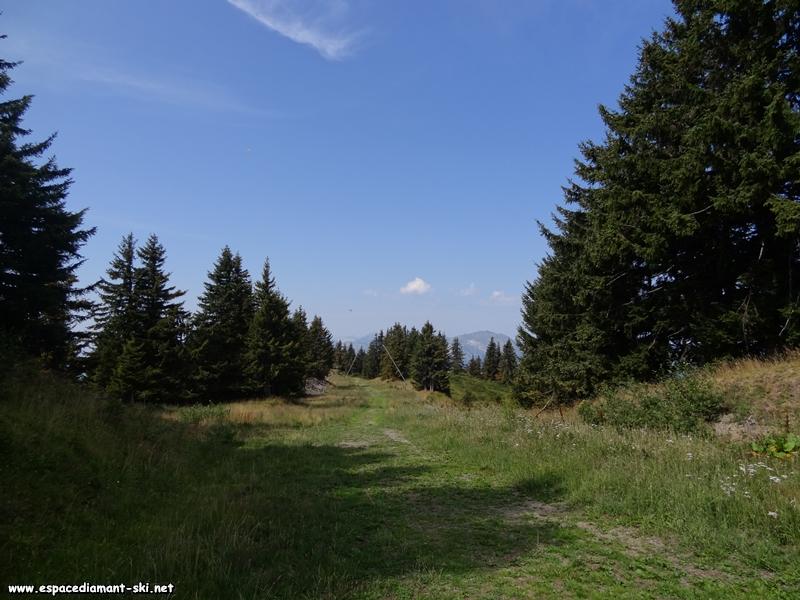 On emprunte le haut du tracé de la piste hivernale des Bouquetins