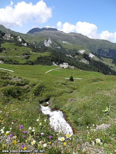 Petit ruisseau avec le Grand Mont en toile de fond