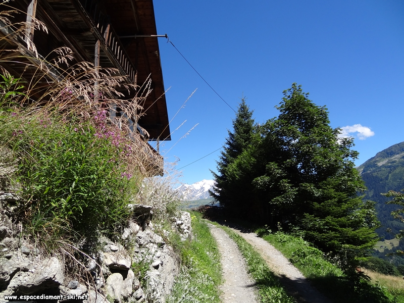 Un vieux chalet et le Mont Blanc au loin