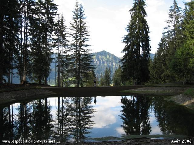 Le Lac des Evettes, niché en plein cœur d'une forêt d'épicéas