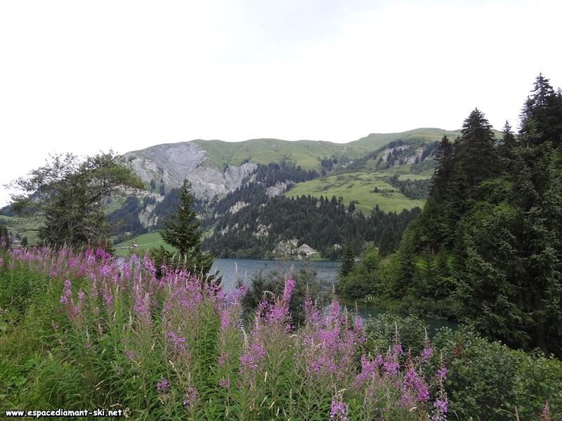 Le Mont des Acrays à gauche