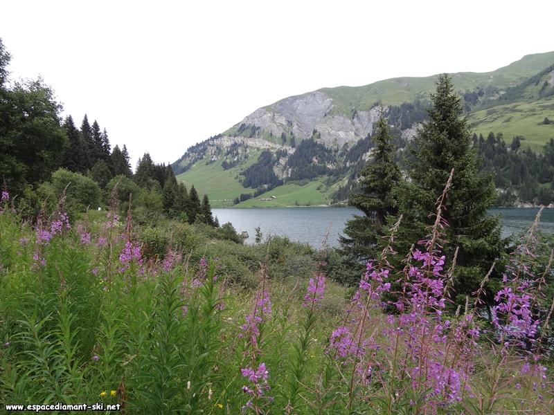 Les barres rocheuses du Mont des Acrays