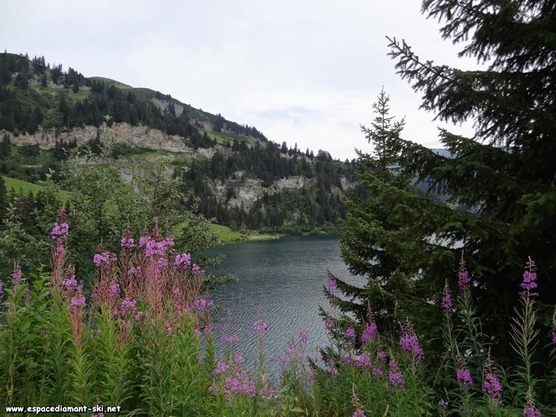 Une dernière vue sur les eaux du lac depuis sa rive nord, avec en arrière plan le massif accidenté du Mont des Acrays