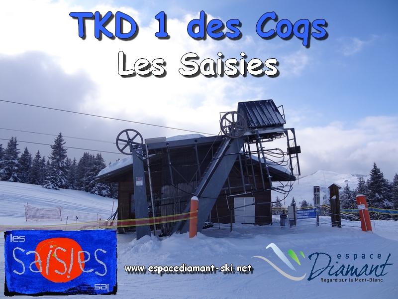 TKD 1 des Coqs