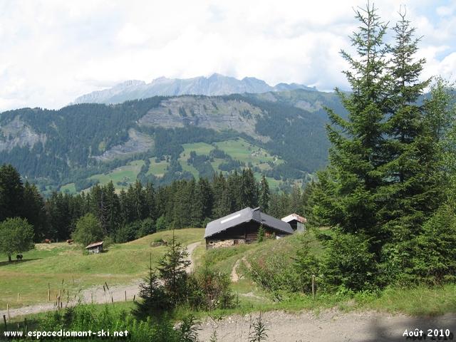 Sapins et chalet d'alpage avec la Chaîne des Aravis en toile de fond