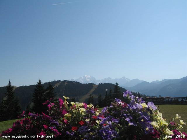 Quelques paysages estivaux...